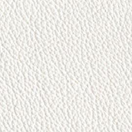 ecoleather-white