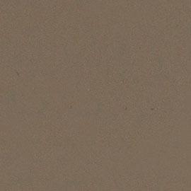 fenix-castoro-ottawa